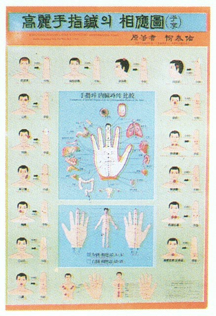 Wandtafel Korrespondenzpunkte Körperrückseite